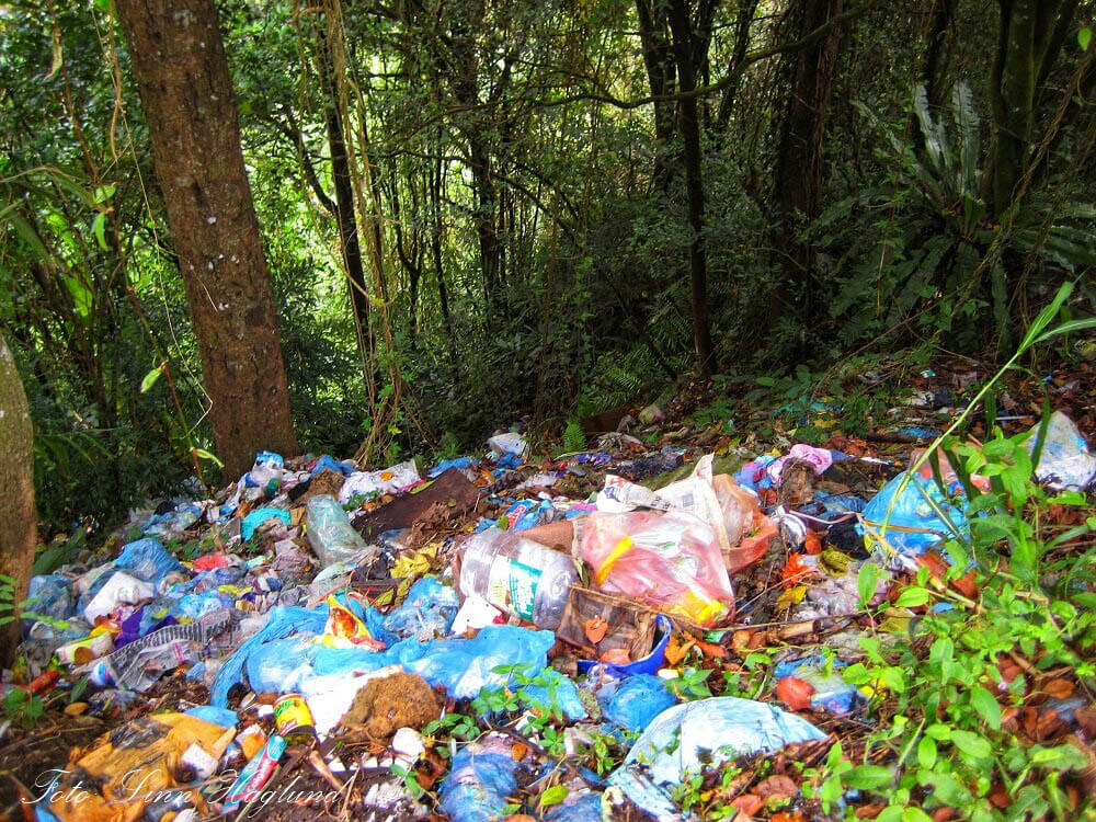 Overwhelming amounts of rubbish in the forest in Malaysia